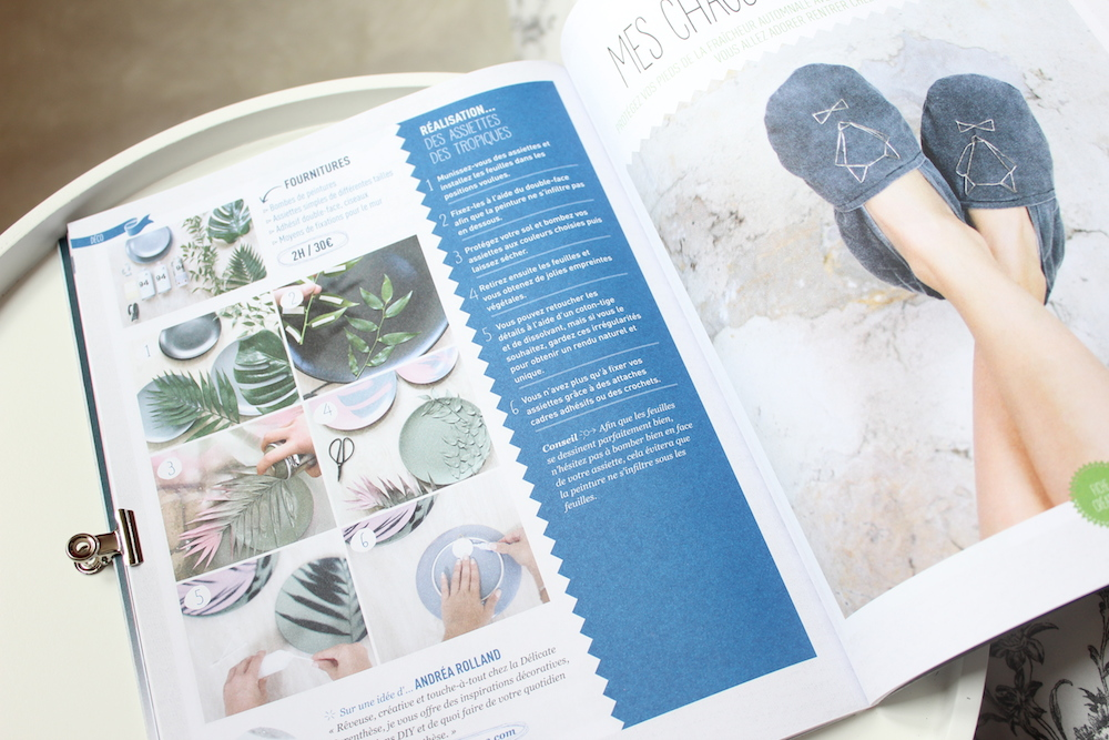 Revue de presse   Magasine DIY (Do It Yourself)